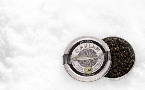 Oscietre Imperial Caviar