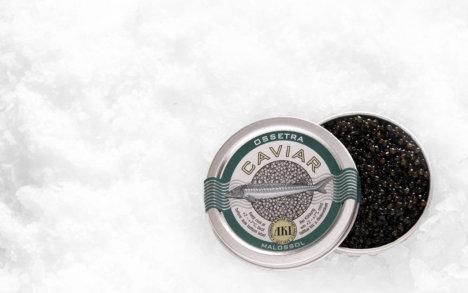 Oscietre Caviar - Køb Caviar. køb Oscietre