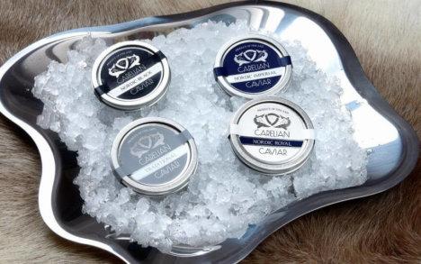 carelian caviar engro. Caviar fra finland